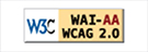 Explanation of WCAG 2.0 Level Double-A Conformance